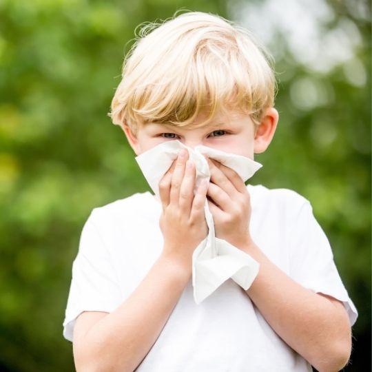 Alergologia e Imunologia Pediátrica